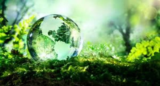 Etf sostenibile Rize Sustainable Future of Food